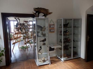 instalace v Muzeu FARA v Plané nad Lužnicí